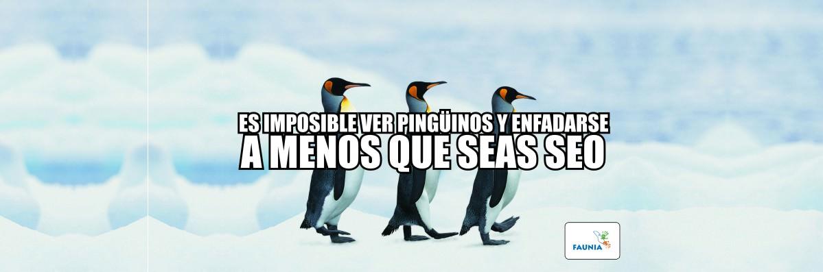Pinguinos SEO